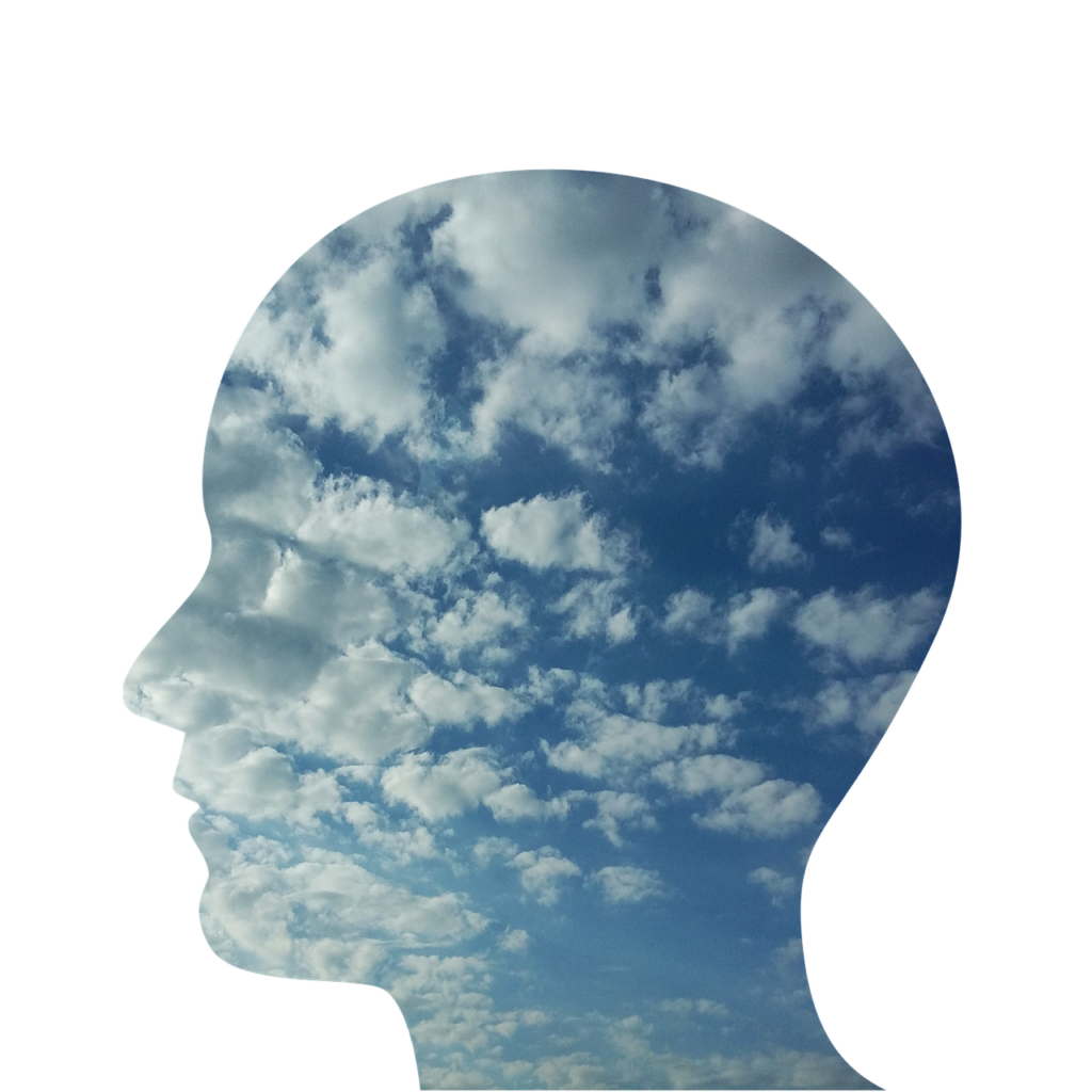 conscious mind